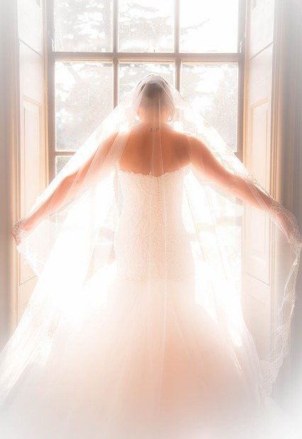 A Bride in Wedding Dress